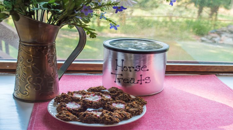 how to make horse treats without molasses and oats