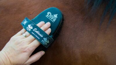Haas Diva Horse Brush