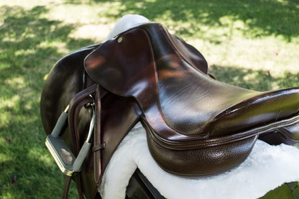Very Are Cheap Saddles Bad? - Budget Equestrian TI68
