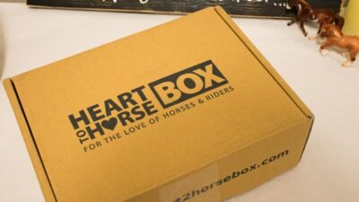 heart to horse box review