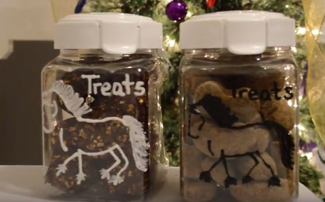 homemade equestrian gifts