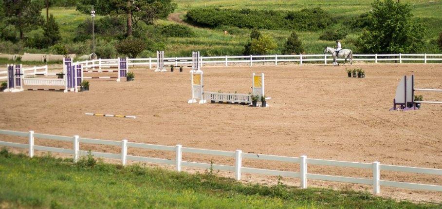 favorite horse show
