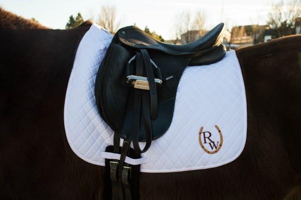 horse blog 30 days
