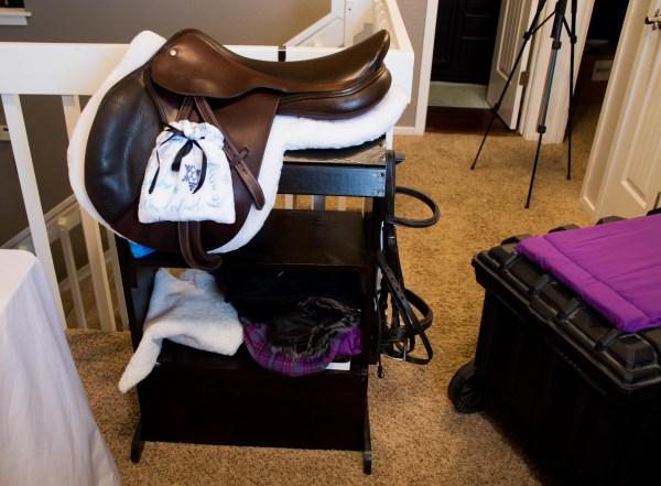 horse blogging challenge