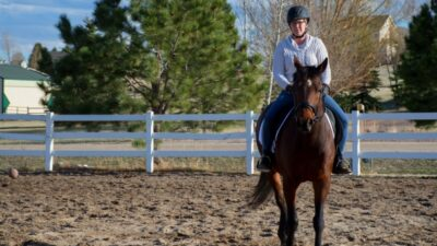 60 Days Until Ethan's First Horse Show