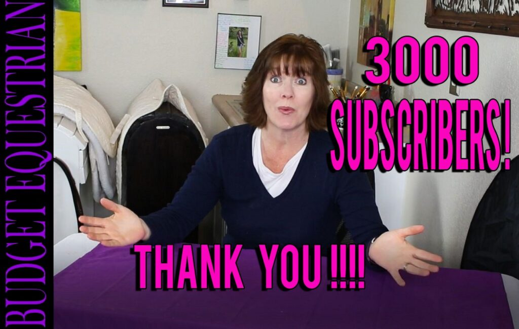 Thank you for 3000 subscribers