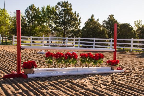 silk flowers for horse jump filler