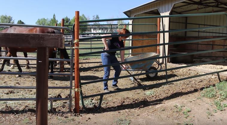 5 Habits For A Cleaner Barn