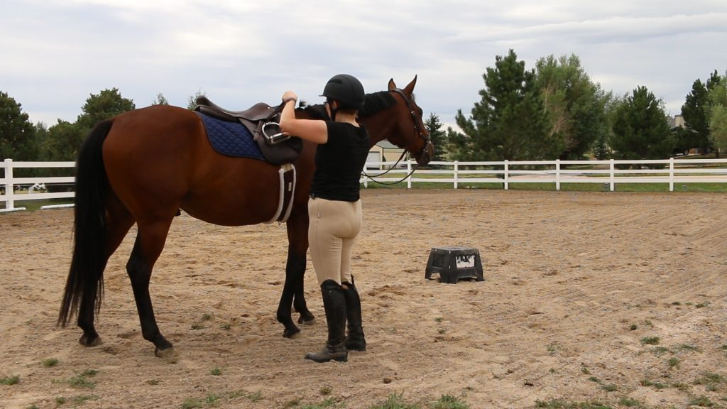 Becoming a Better Rider – Day 7