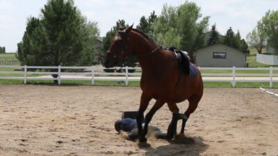 getting bucked off