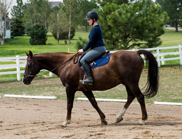 creating a warm up for you and your horse