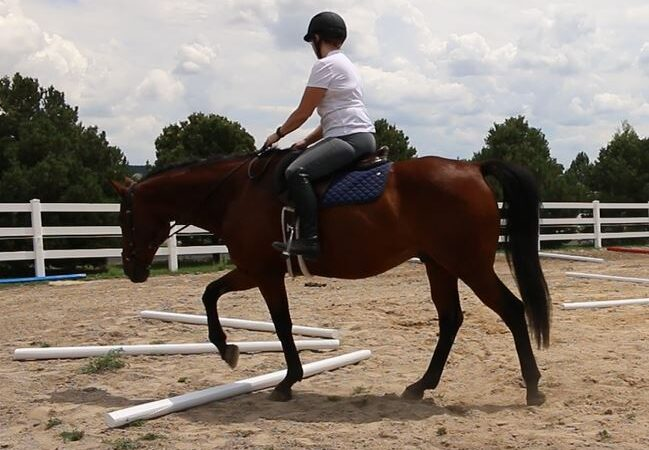 Better Balance with Trotting