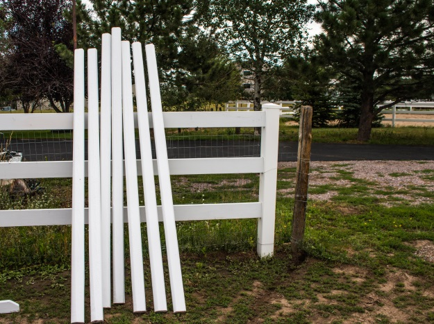 horse jump rails painted white