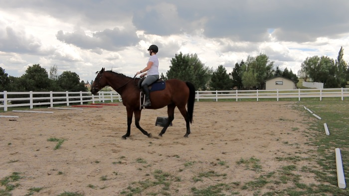 Becoming A Better Rider Day 8: Riding Without Stirrups