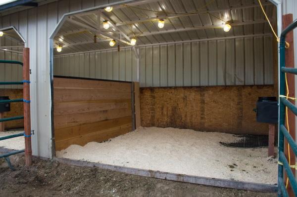 a clean horse stall