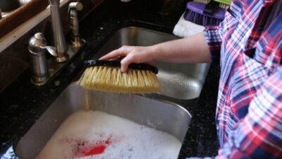make your horse brushes last longer