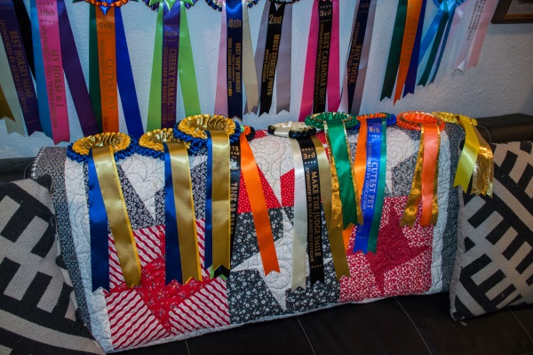 decorating with horse show ribbons