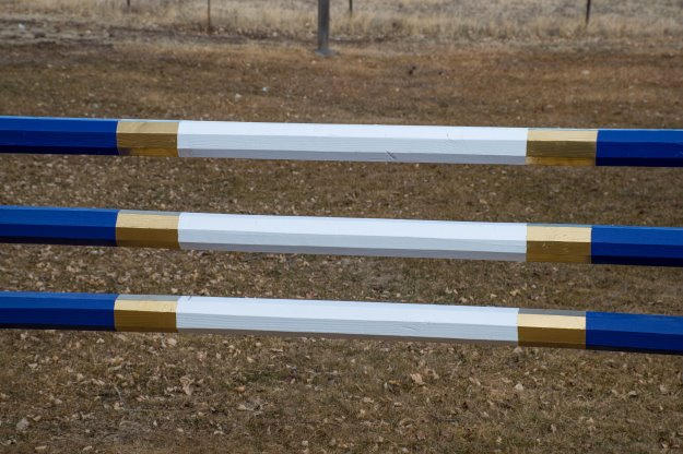 diy painting horse jump rails