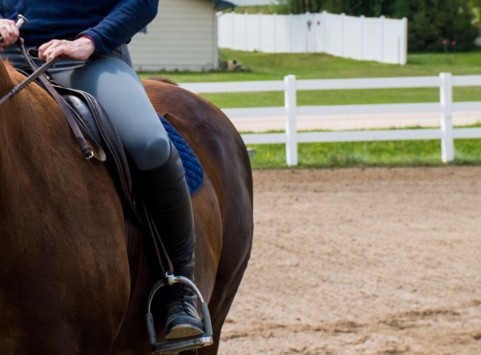 my weekly riding lesson