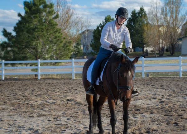 riding lesson tips