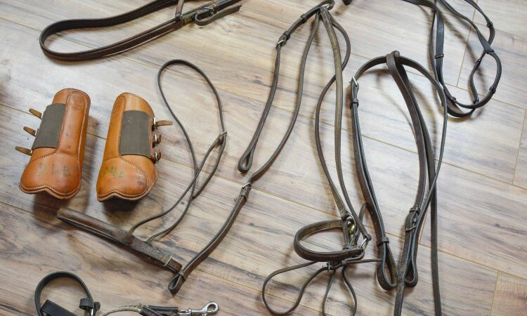 I'm selling my horse stuff on eBay