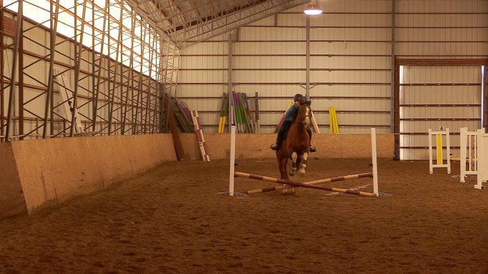 jumpi g a horse over a small cross rail