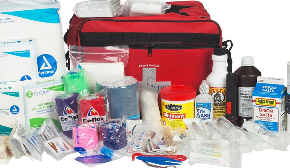 equine must have first aid essentials