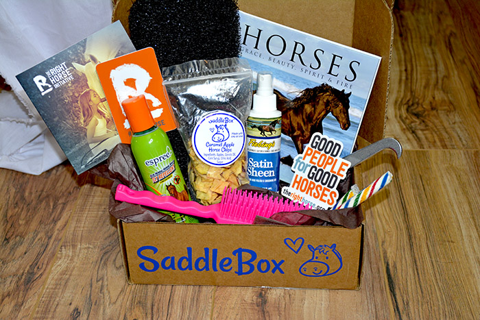 Saddle Box Unboxing