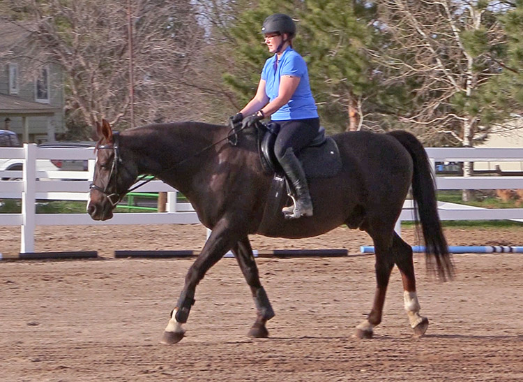 10 Benefits Of Walking Your Horse