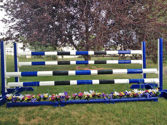 a homemade horse jump in black blue and white