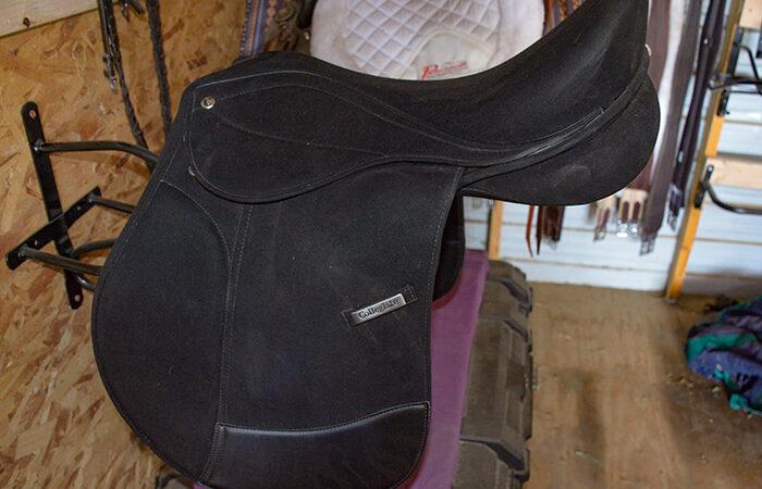 Saddle Comparison - Finding your Favorite Saddle