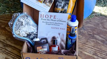 June Saddle Box Unboxing
