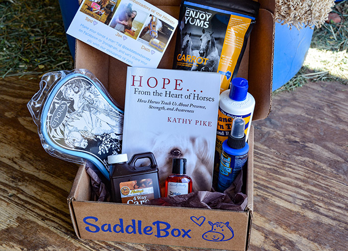 June Saddle Box Unboxing