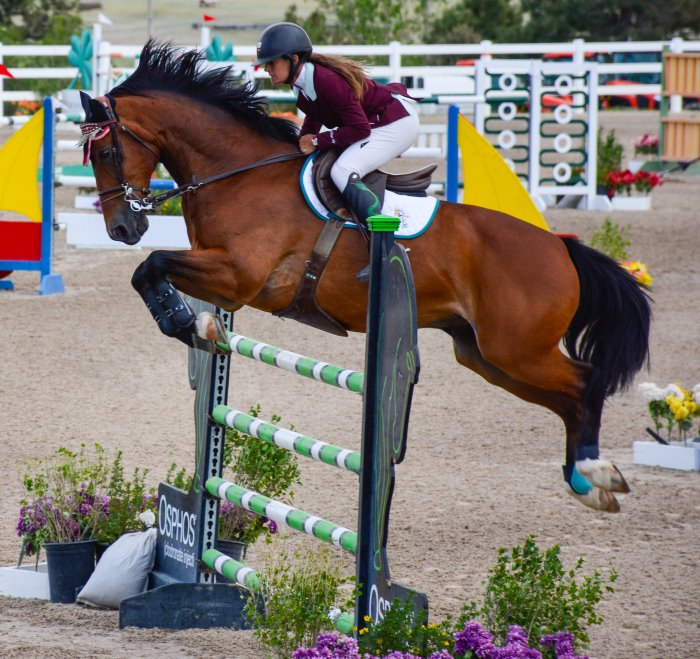 horse and rider going over a vertical jump