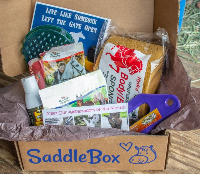 equestrian theme subscription box