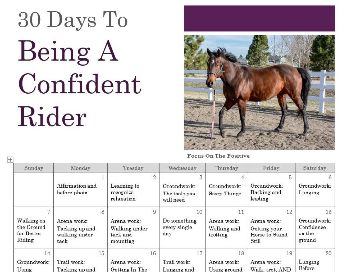 calendar for confident rider plan
