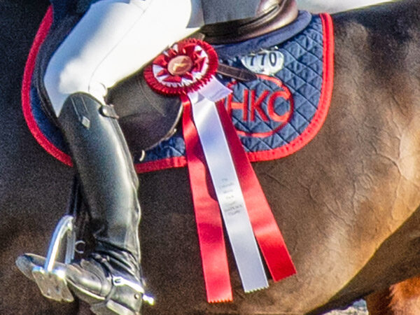 close up of a rider in a horse show