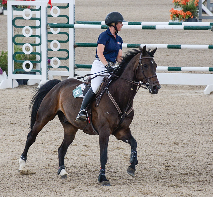 woman on a horse in a horse show