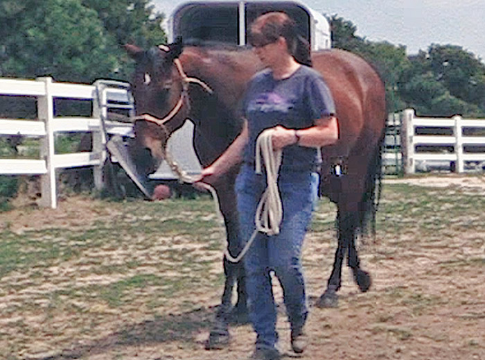 Backing And Leading Your Horse – Confidently
