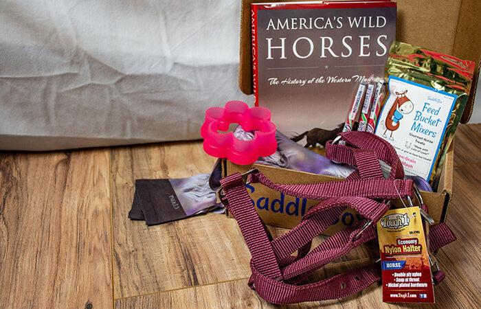 August Saddle Box Unboxing