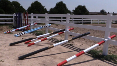 Introducing Ground Poles To Your Groundwork