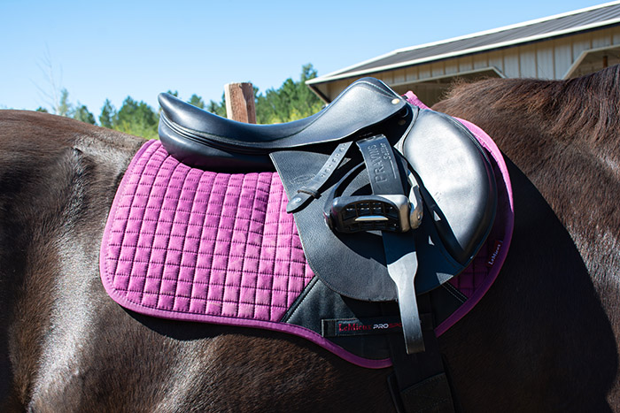 gift ideas for equestrians