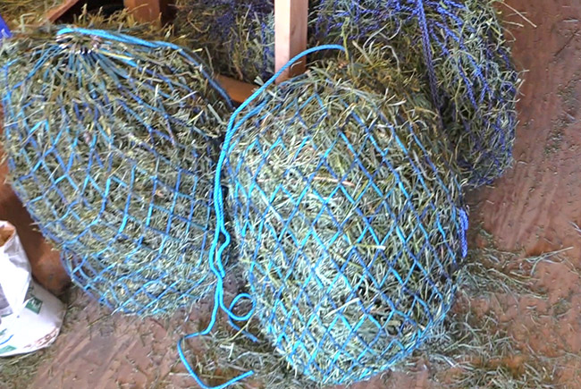 All About Hay Nets