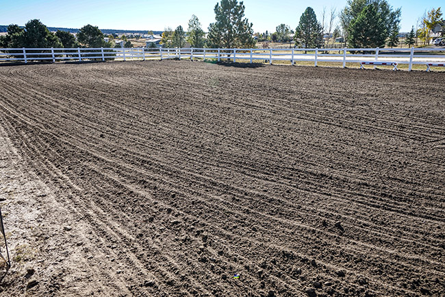 a groomed riding arena