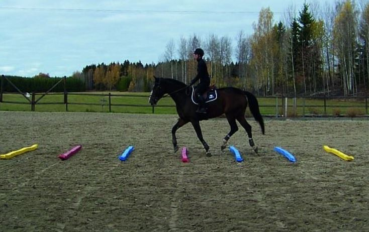 How To Make Soft Poles For Jumping Exercises