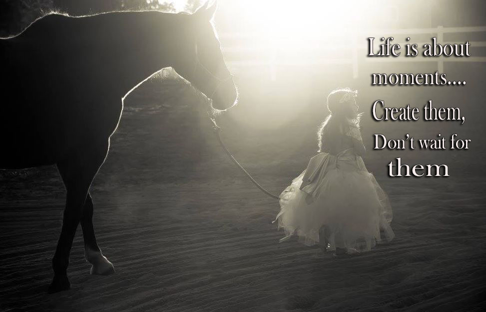 Quotes Any Equestrian Can Relate Too a little girl walking a horse