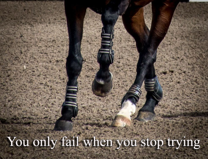 a close up of a horses hooves as he gallops in a sand arena