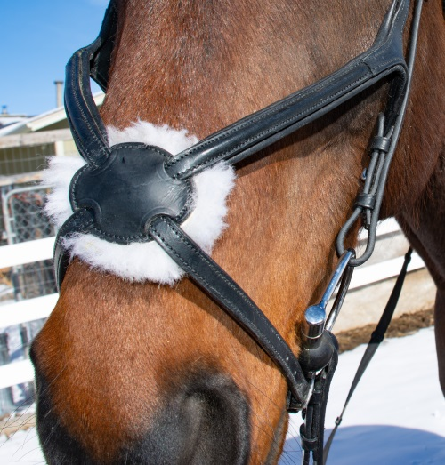 a close up of a figure 8 bridle on a horse