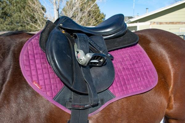 an English saddle on a horse