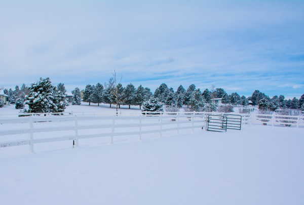an outdoor riding arena in the winter